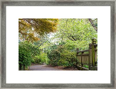 Beautiful Pathway Framed Print by Priya Ghose