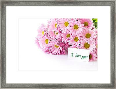 Beautiful Pink Chrysanthemums Framed Print by Boon Mee