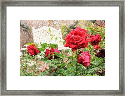 Beautiful Red English Roses With White Bench Framed Print by Beverly Claire Kaiya