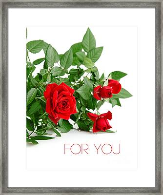 Beautiful Red Roses For You Framed Print by Boon Mee