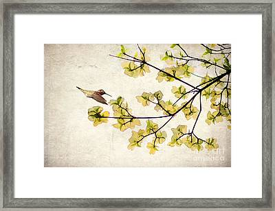 Beautiful Spring Framed Print by Darren Fisher