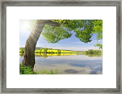 Beautiful Spring Landscape Framed Print by Boon Mee