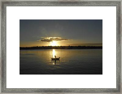 Beautiful Sunset Framed Print by David Yack