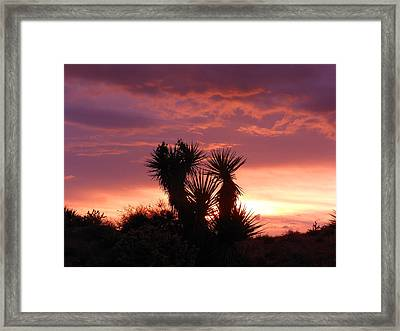 Beautiful Sunset In Arizona Framed Print