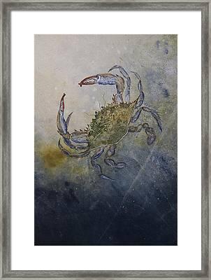 Beautiful Swimmer Framed Print by Nancy Gorr