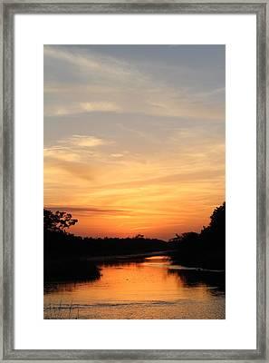Beautiful View Framed Print by Cynthia Guinn