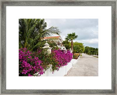 Framed Print featuring the photograph Beautiful Walk by Amar Sheow