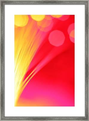 Beautiful Way Framed Print