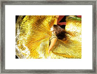 Beautiful Wings Framed Print by Christine Holding
