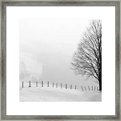 Beautiful Winter Landscape With Tree And Fence Framed Print