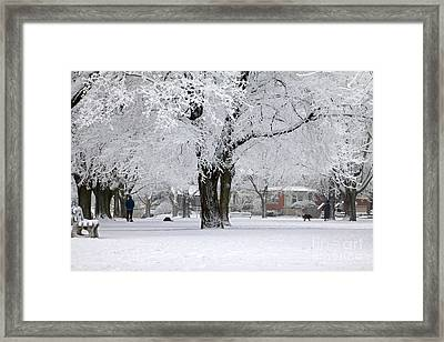 Beautiful Winter Park Framed Print by Charline Xia