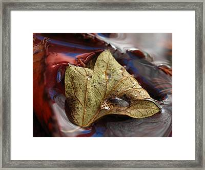 Beautiful World Framed Print by Juergen Roth