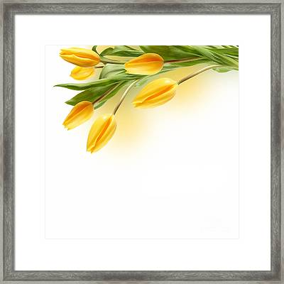 Beautiful Yellow Flower Framed Print by Boon Mee