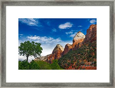 Beautiful Zion Framed Print by Robert Bales