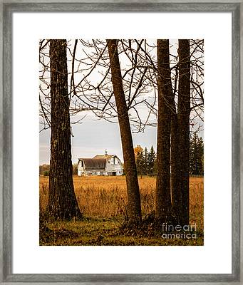 Beautifully Weathered Framed Print