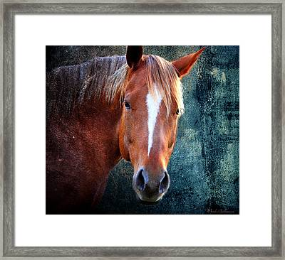 Beauty 5 Framed Print by Mark Ashkenazi