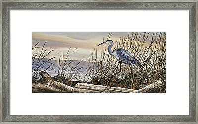 Beauty Along The Shore Framed Print