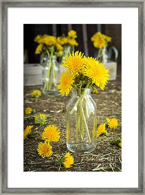Beauty Among The Weeds Framed Print by Edward Fielding