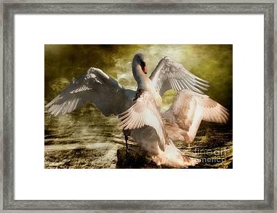 Beauty And Power 2 Framed Print by Wobblymol Davis