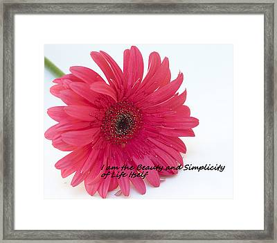 Beauty And Simplicity Framed Print
