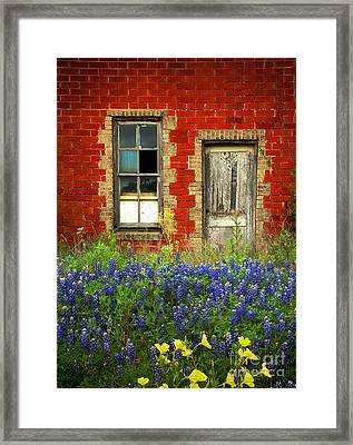 Beauty And The Door - Texas Bluebonnets Wildflowers Landscape Door Flowers Framed Print