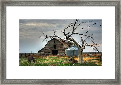 Beauty And The Geese Framed Print