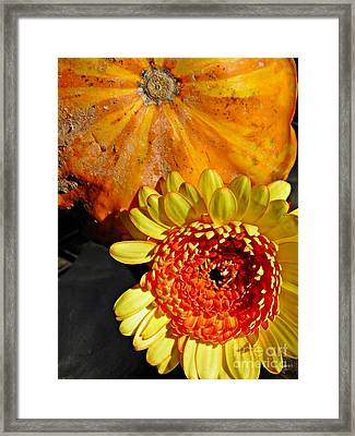 Beauty And The Squash 2 Framed Print by Sarah Loft