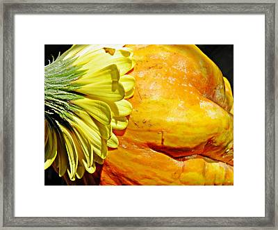 Beauty And The Squash 3 Framed Print by Sarah Loft