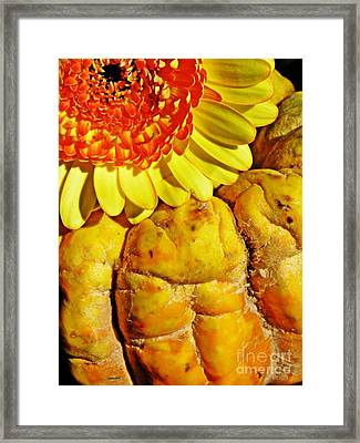 Beauty And The Squash Framed Print by Sarah Loft