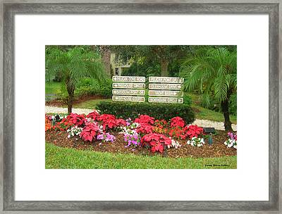 Beauty At Pelican Cove Framed Print