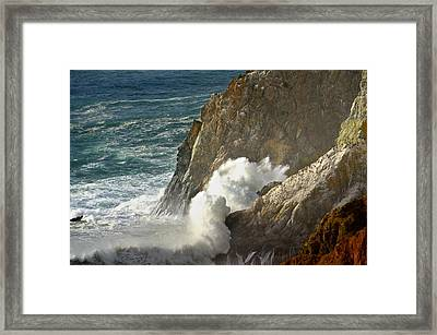 Beauty At The Beach  Framed Print by Alex King