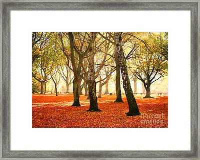 Framed Print featuring the photograph Beauty Autumn by Boon Mee