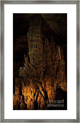 Beauty Below Framed Print