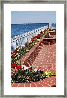 Framed Print featuring the photograph Beauty By The Lake by Ramona Whiteaker