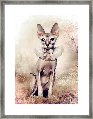 Beauty Framed Print by Cindy Grundsten