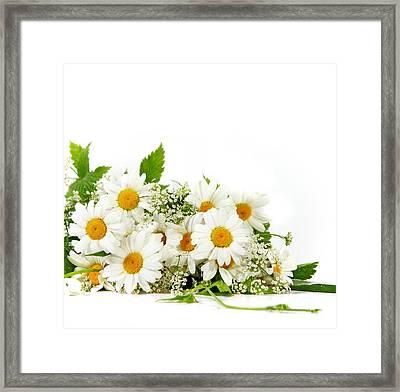 Beauty Daisy Flowers Framed Print by Boon Mee