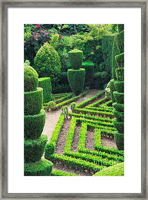 Beauty Decorative Green Park Framed Print by Boon Mee