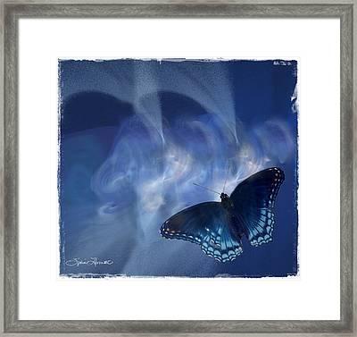 Beauty In Blue Framed Print by Sylvia Thornton