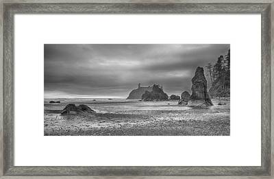 Beauty In Grey Framed Print