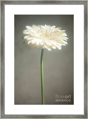 Framed Print featuring the photograph Sunbathing by Aiolos Greek Collections