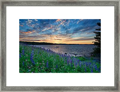 Beauty In The Sky Framed Print