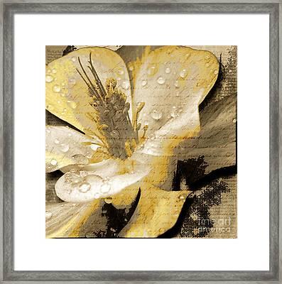 Beauty Iv Framed Print by Yanni Theodorou