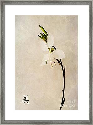 Beauty Framed Print by John Edwards