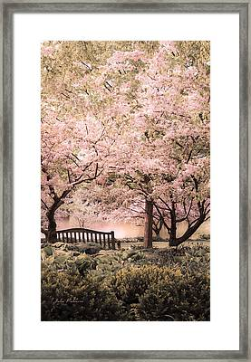 Beauty Of A Spring Garden Framed Print by Julie Palencia