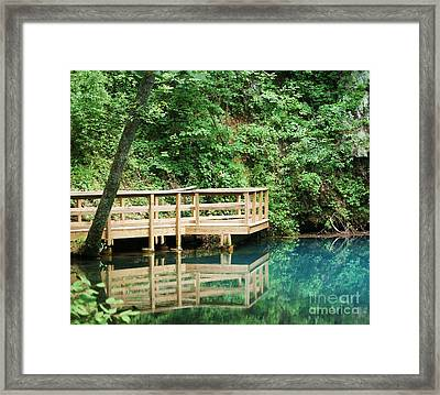 Framed Print featuring the photograph Beauty Of Blue Spring by Julie Clements