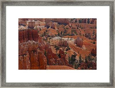 Beauty Of Bryce Framed Print by Kimberly Oegerle