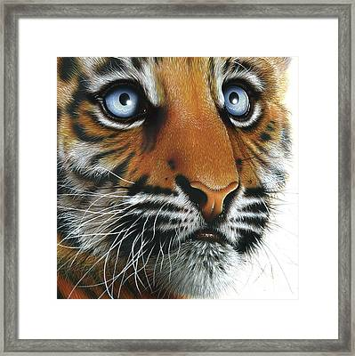 Beauty Of My Mother's Eyes Framed Print by Jurek Zamoyski