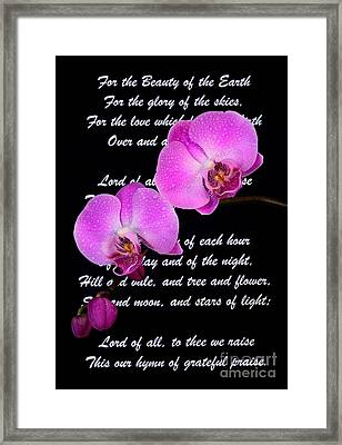 Beauty Of The Earth Framed Print by Pattie Calfy