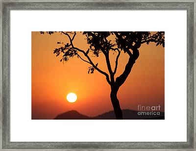 Beauty Of The Nature Framed Print