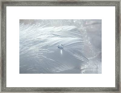 Beauty Of White Framed Print